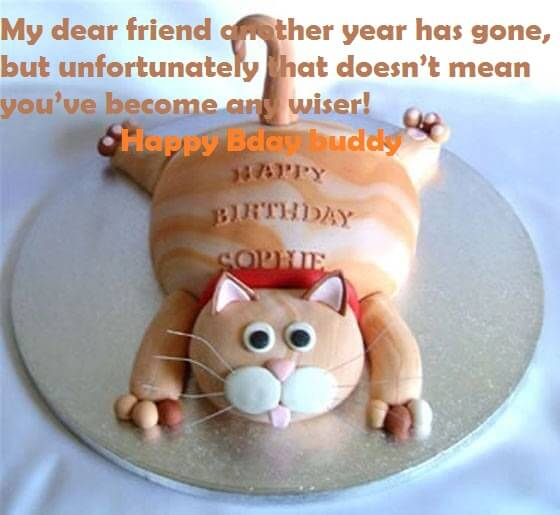 Birthday Funny Cake Quotes For Friend