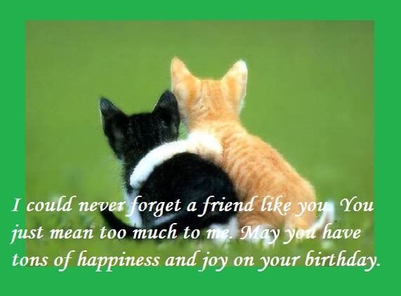 Birthday Quotes Wishes For Best Friend