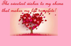 Love Romantic Birthday Quotes For Shona