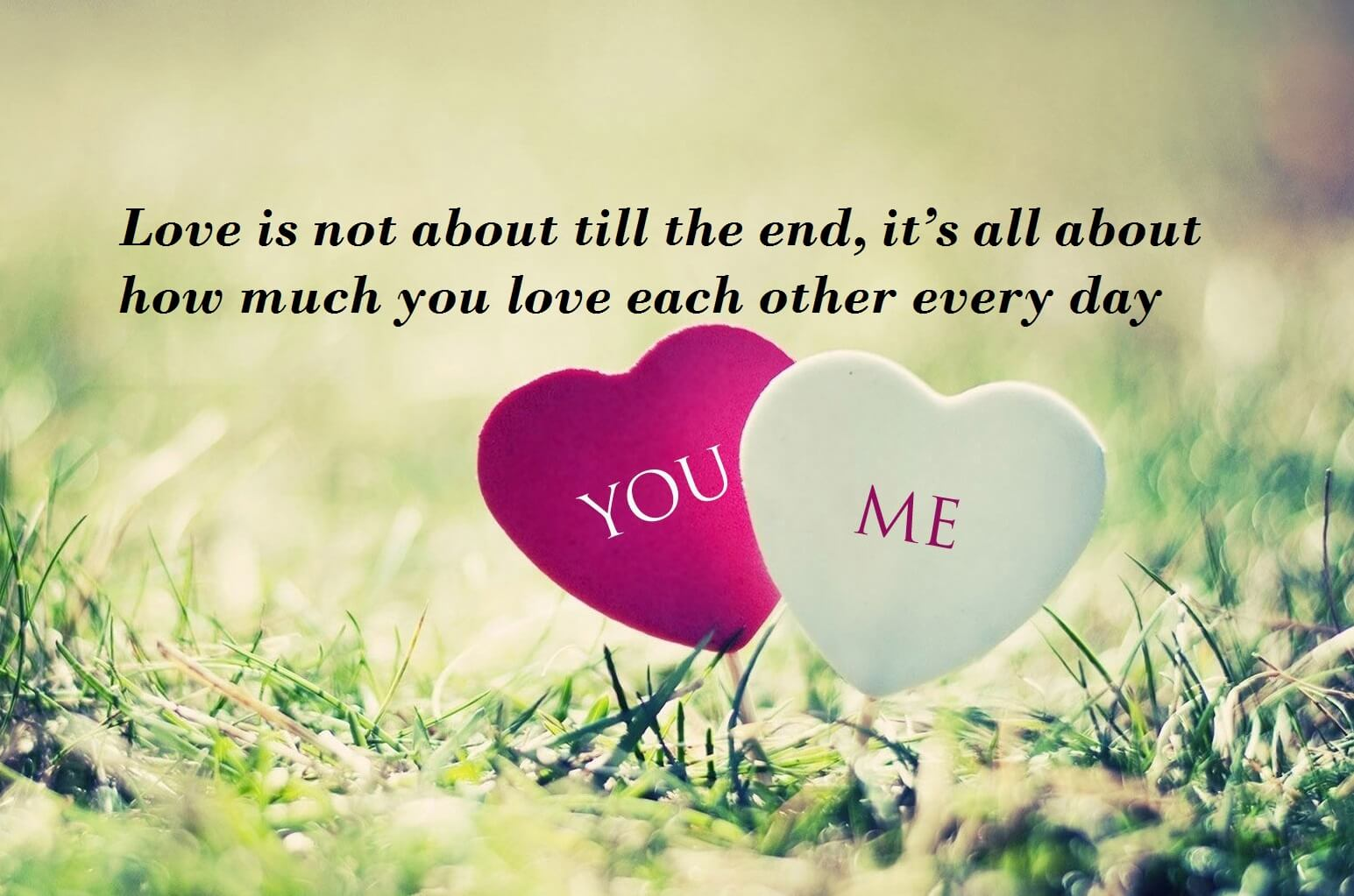 Love Romantic Quotes Lines For My Darling  Best Wishes